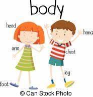 Top 79 Body Parts Clip Art - Free Clipart Image