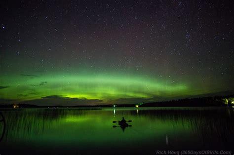minnesota northern lights viewing  photography