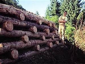Hang Befestigen Mit Holz : holzbau gartengestaltung landschaftsbau mit holz ~ Articles-book.com Haus und Dekorationen
