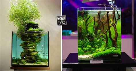 d 233 corer un petit aquarium voici un peu d inspi 20 id 233 es