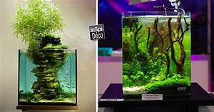 Idee Decoration Aquarium : d corer un petit aquarium voici un peu d 39 inspi 20 id es ~ Melissatoandfro.com Idées de Décoration