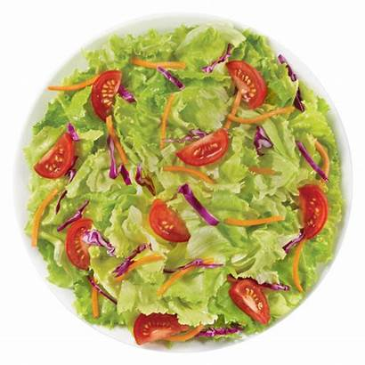 Garden Salad Lettuce Iceberg Cabbage Ingredients Greens