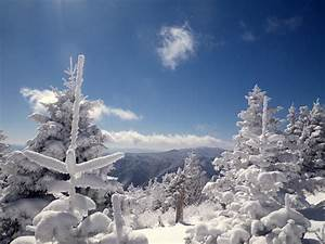 February 20th, 2013 - High On LeConte
