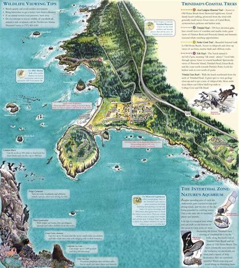 trinidad ca trails map maplets