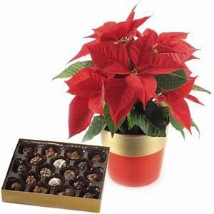 Christmas Gift to Nizhny Novgorod Russia