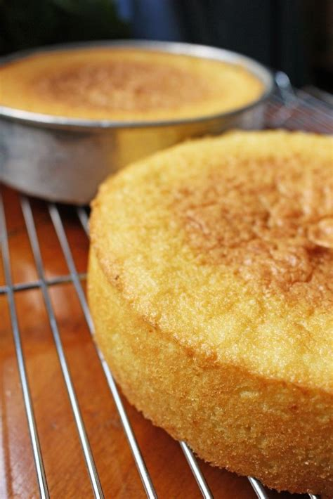 vanilla sponge cake recipe   cake recipes