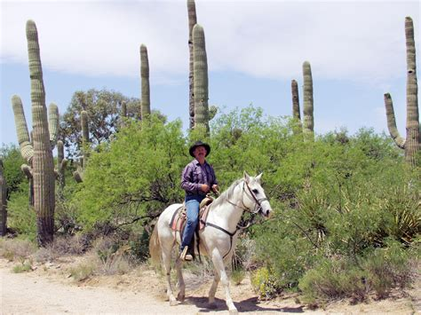 tucson visitors bureau tucson itinerary suggestions for groups
