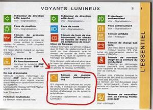 Signification Voyant Tableau De Bord Scenic : voyant orange voiture signification voyant tableau de bord voiture signification voyant ~ Gottalentnigeria.com Avis de Voitures