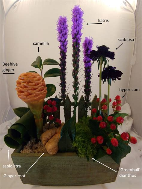 certification principles  floral design certification