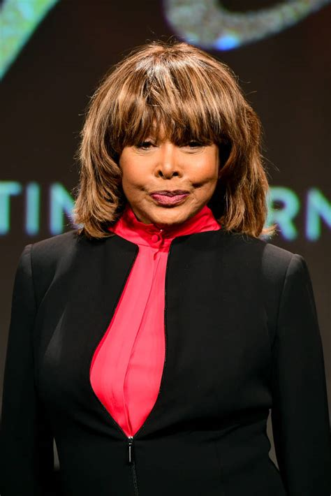 50th anniversary tour, wrapped up in 2009, tina turner officially retired. Tina Turner's head turned into giant statue at Dreamland ...