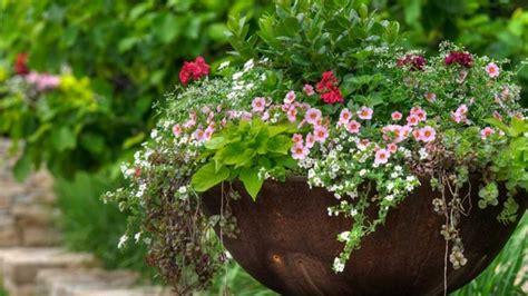 Winterschutz Für Kübelpflanzen > Garten Ratgeber