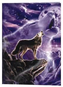 wolf sprüche wolf wolves photo 8447352 fanpop