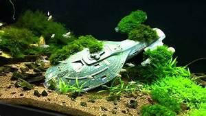 Coole Aquarium Deko : cool goldfish tank ideas the image kid has it ~ Markanthonyermac.com Haus und Dekorationen