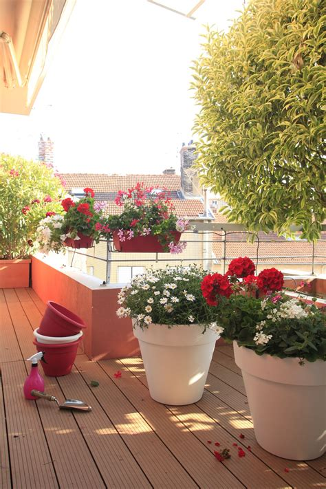 balcons  terrasses fleuris botanic jardiniere