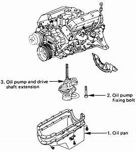 service manual 1999 isuzu trooper water pump replacement With isuzu water pump