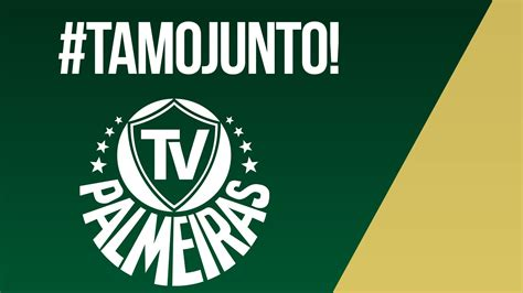 Palmeiras ganha 10 mil novos inscritos em seu canal o ...