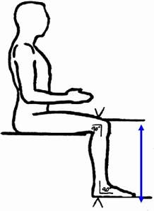Knee Height  From Nhanes Anthropometric Manual