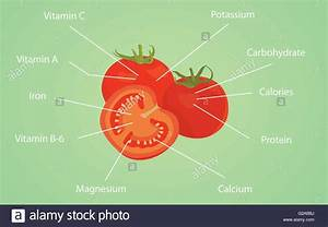 Tomato Tomatoes Nutrition Nutrient Data Information