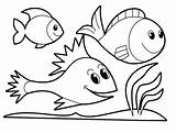 Trout Rainbow Drawing Coloring Clipartmag sketch template