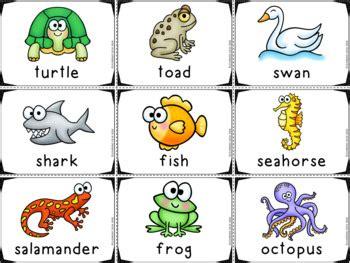 Animal Habitats For Kindergarten Animal Sorting Picture
