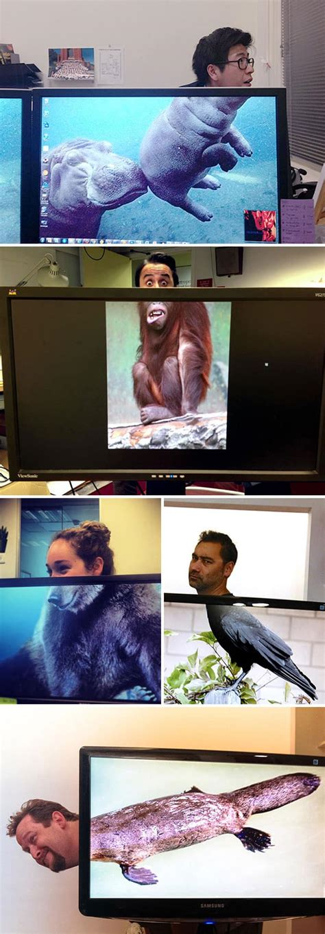 images  show    people  bored  work