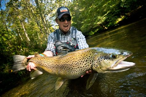 Catch Trophy Brown Trout By Stacking The Odds In Your