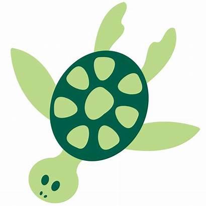 Sea Clip Animals Cliparts Turtle Colorful Clipart