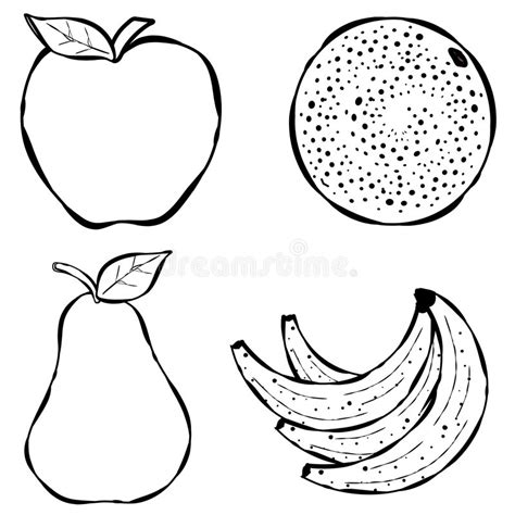 fruit  art stock illustration illustration