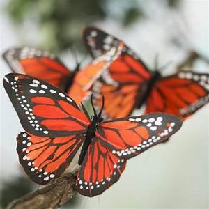 Artificial Monarch Butterflies