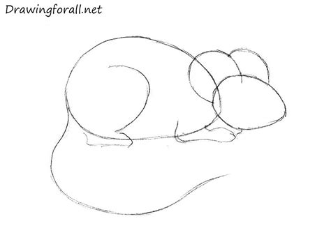 draw  mouse  beginners drawingforallnet