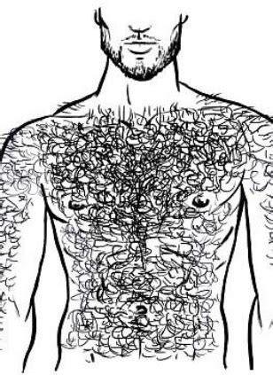 os tipos de pelos  peito  depilacoes tudo  homens