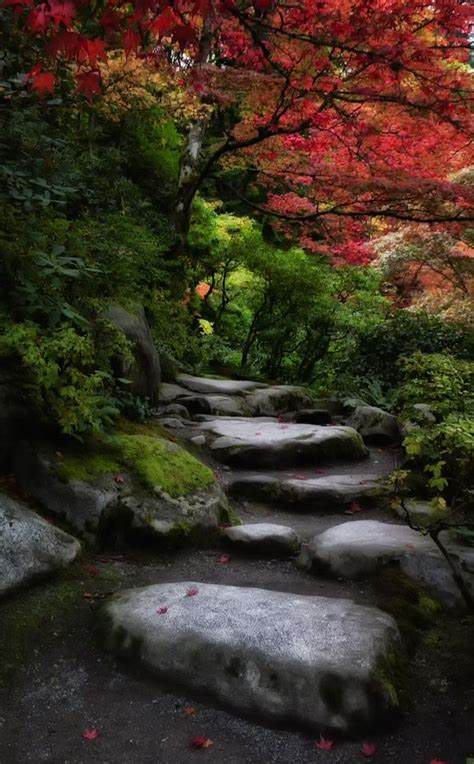 seattle paths and japanese gardens on