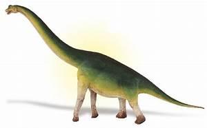 Brachiosaurus 2010(Wild Safari) The Dinosaur Farm