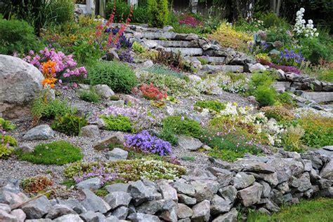 giardino roccioso progetto progettare un giardino roccioso originale ed affascinante