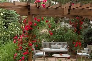 Plans to build Rose Pergola Plans Download