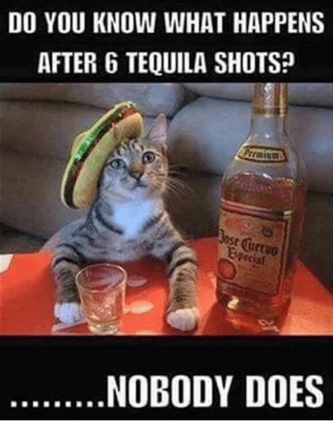 funny tequila memes    sizzle