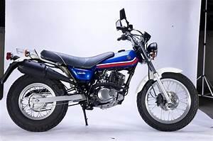 Suzuki Vanvan 125 : suzuki suzuki van van 125 moto zombdrive com ~ Medecine-chirurgie-esthetiques.com Avis de Voitures
