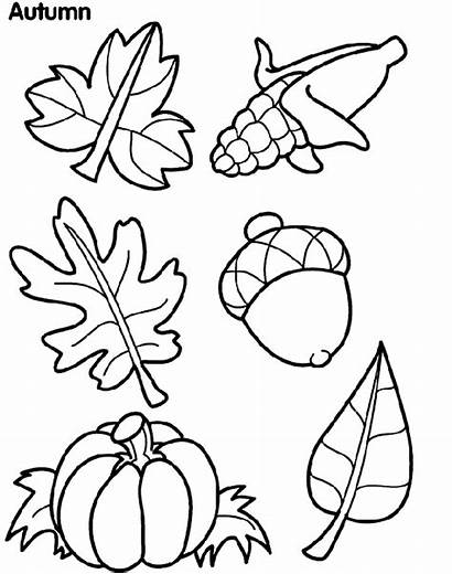 Coloring Pages Leaves Autumn Crayola Fall Leaf