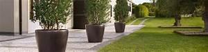 Terrasse Gestalten Pflanzen : terrasse pflanzen gut sichtschutz terrasse holz terrasse ~ Orissabook.com Haus und Dekorationen