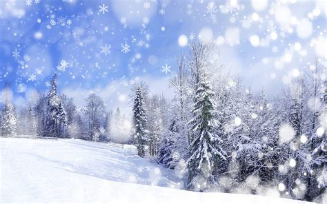 Anime Winter Scenery Wallpaper - winter anime wallpapers wallpaper cave