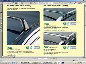Pose Toit Ouvrant Feu Vert : barres de toit feu vert pour megane auto titre ~ Medecine-chirurgie-esthetiques.com Avis de Voitures