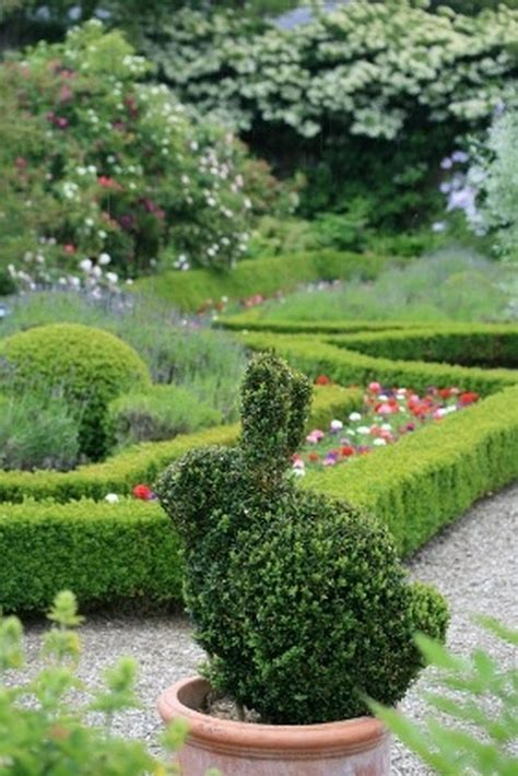 rabbit garden topiary design in animal shapes