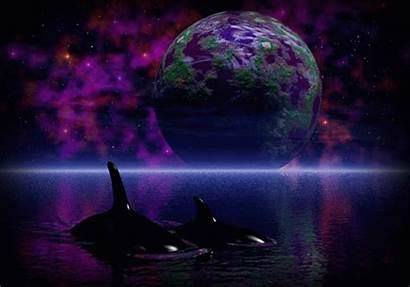Glitter Dream Fantasy Gifs Orca Graphics Copy