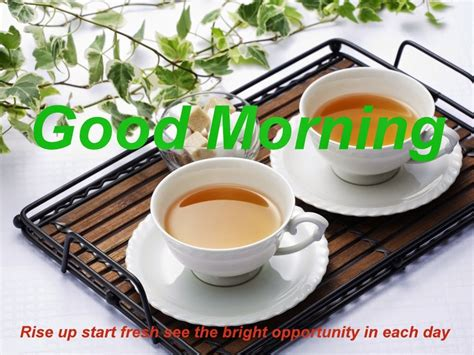 Good Morning Images Coffee Creamers And Health Pods Adelaide Vs Cafetiere Uae Red Bean Menu Which Can You Recycle K Fee Holland Village