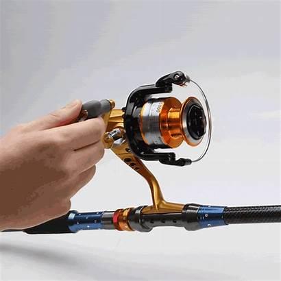Fish Reel Spinning Fishing 1bb Freshwater Seaknight