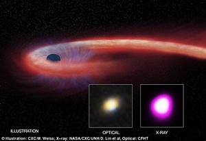 Massive black hole feasted on a giant star for 10 years ...