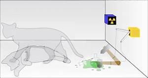 Schr U00f6dinger U0026 39 S Cat