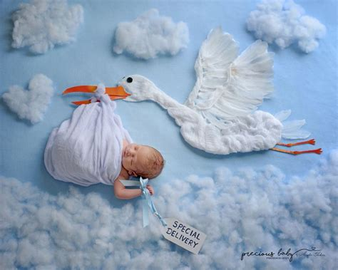 creative newborn   adorably whimsical