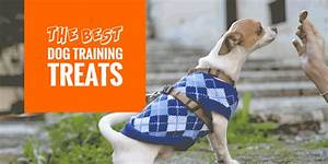 Top 10 Best Dog Training Treats For Adults & Puppies ...