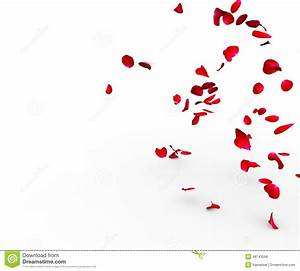 Romantic Love Background With Falling Rose Petals Royalty ...